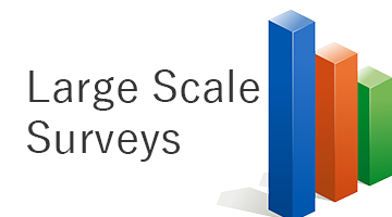 Large Scale Surveys